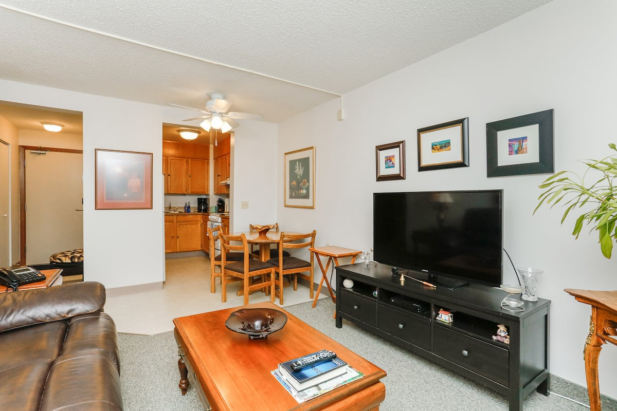 One bedroom suite (example 2) living room